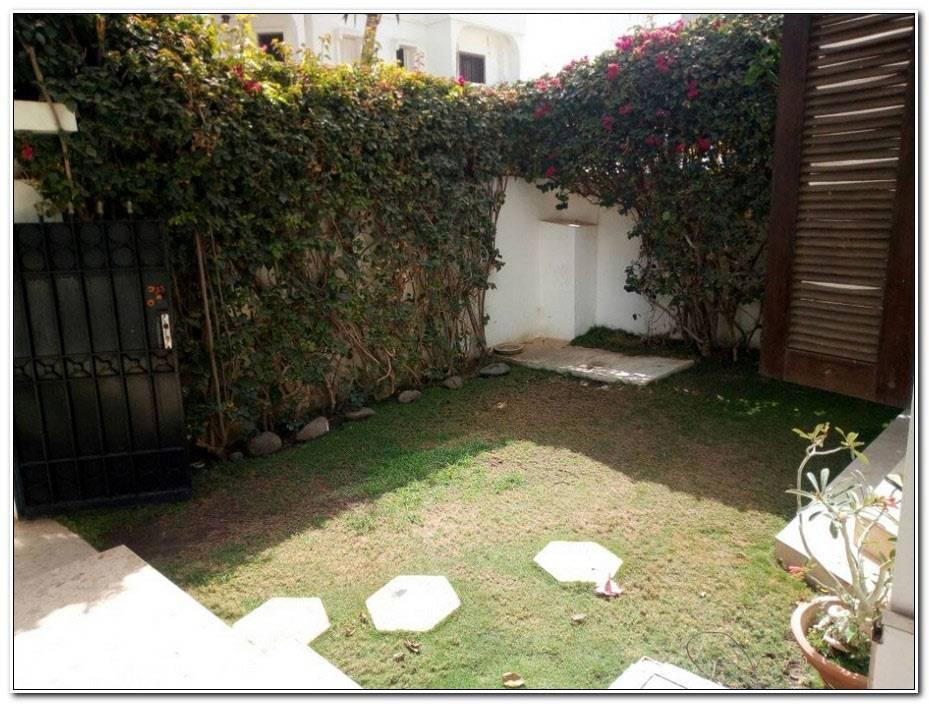 Jardins Et Terrasses Dakar