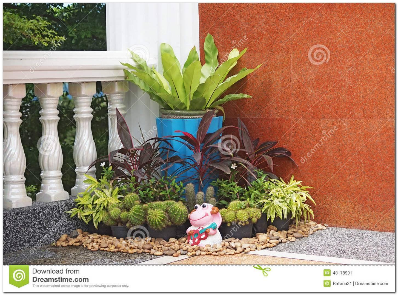 Jardins Pequenos De Canto