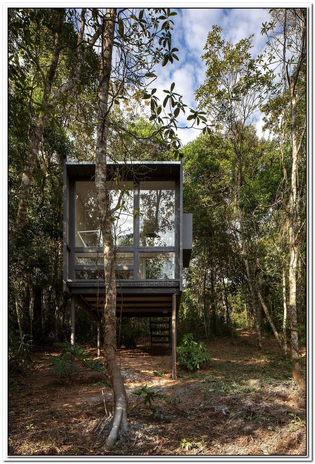 Living With Bare Minimum6 Sqm Cabin In The Forest Provides The Perfect Refuge