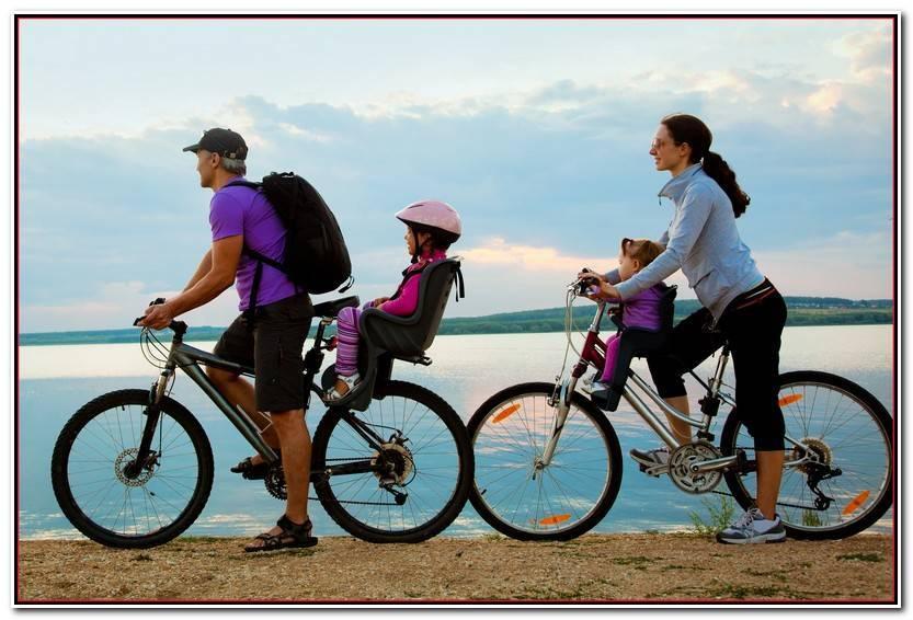 Lo Mejor De Sillas Para Bicicleta Colección De Silla Accesorios