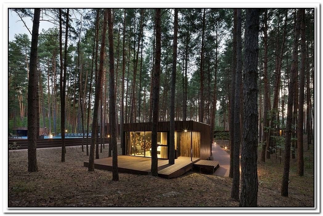 Low EcoImpact Guest Houses With Minimal Interior Take You Inside A Pine Forest