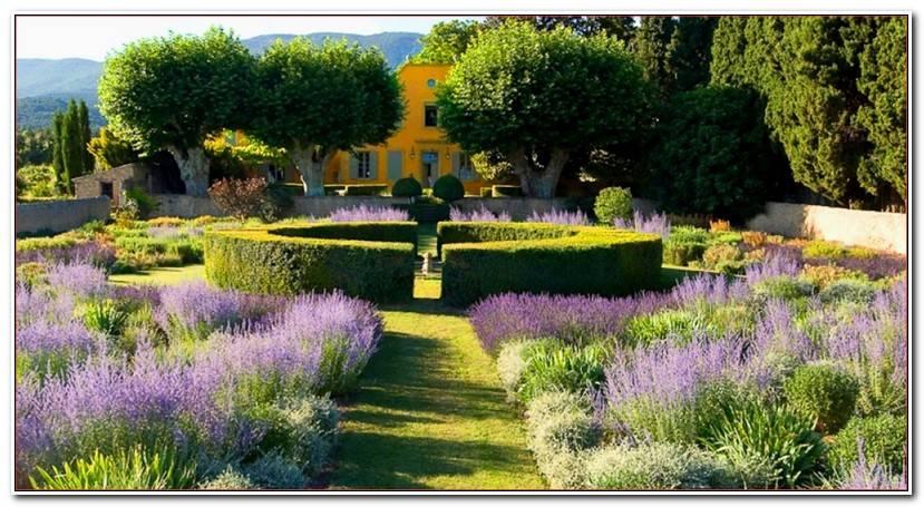 Luxe Jardin Du Thé Grenoble