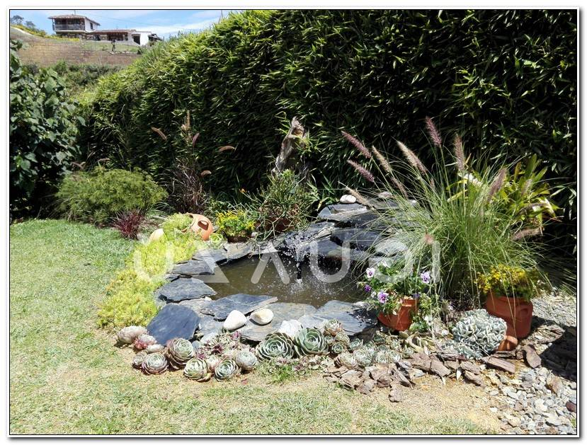 Luxe Jardin Magique
