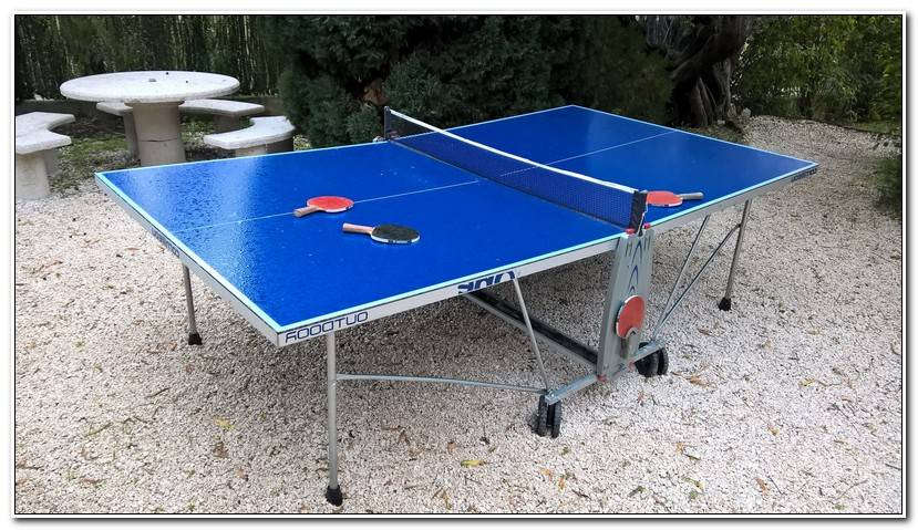 Luxe Table De Ping Pong Occasion