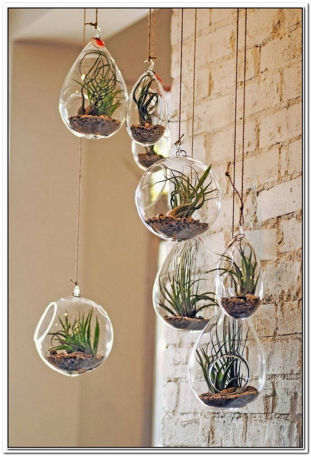 Magical Hanging Glass Bubble Planters