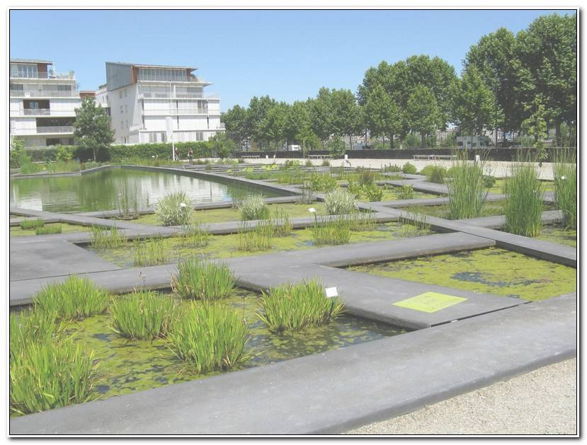 Meilleur Jardin Botanique De Bordeaux