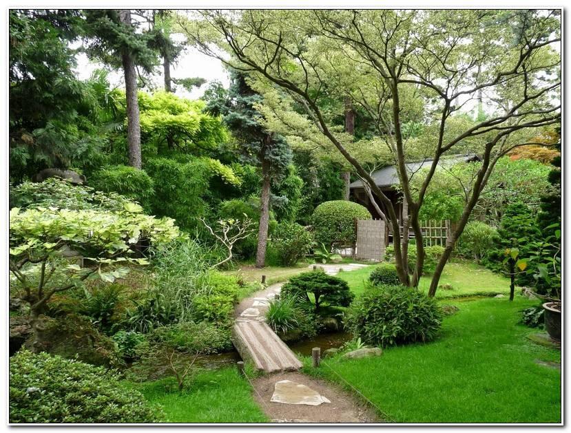 Meilleur Jardin D Acclimatation Plan