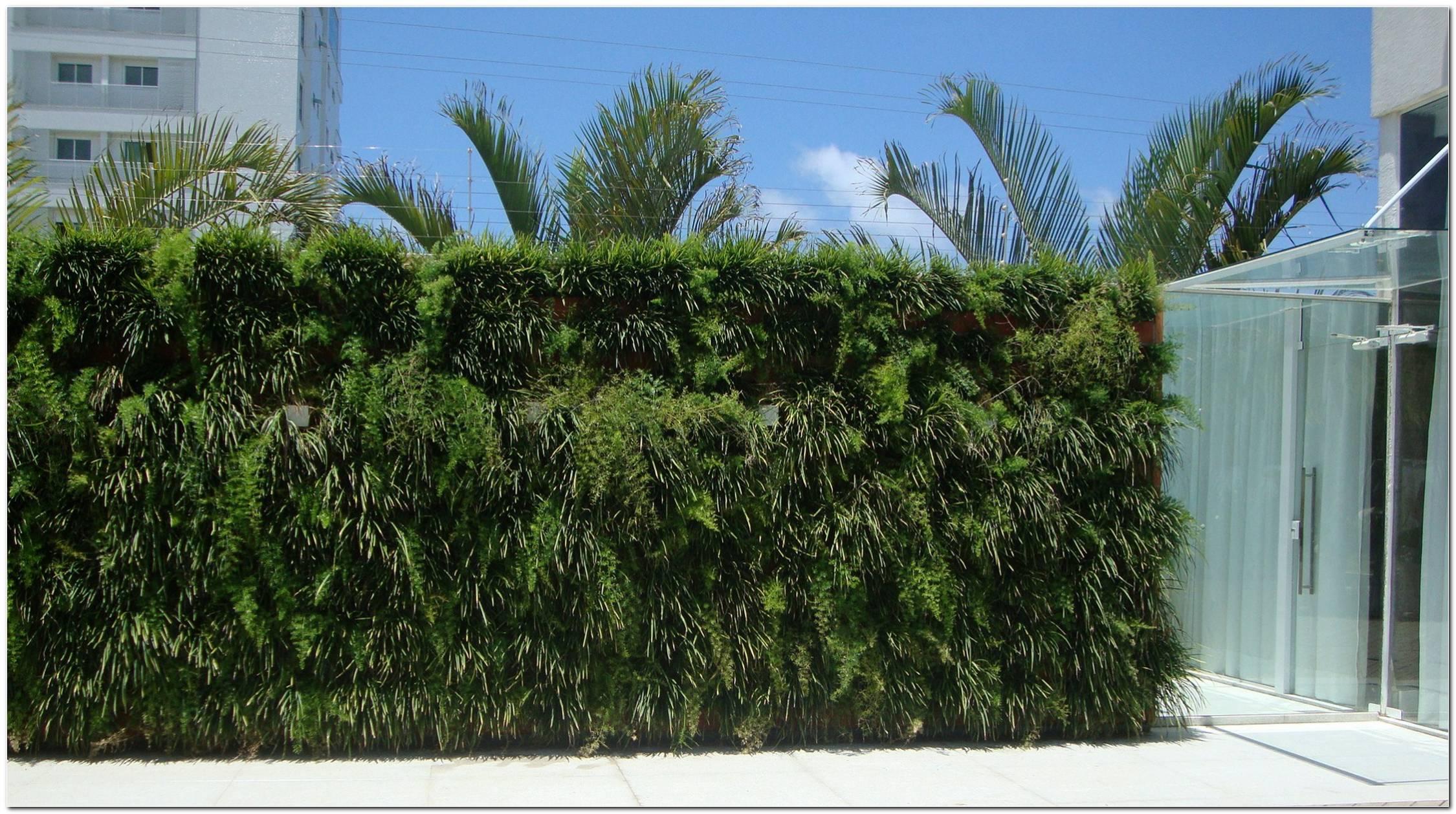 Muro Verde Como Fazer Dicas E Fotos
