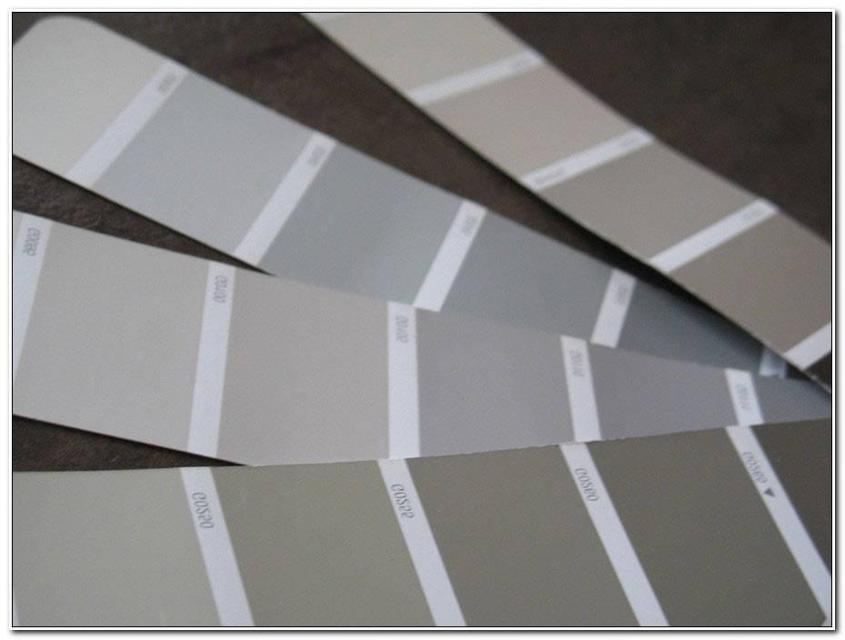 Palette De Couleur Peinture Gris