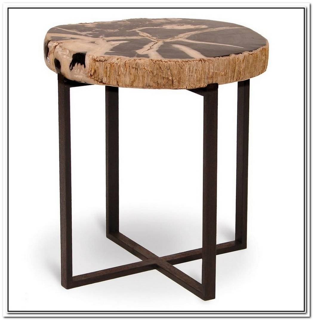 Petrified Wood As Outdoor Stool Or Table