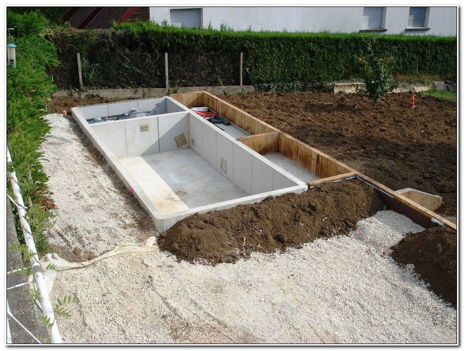 Piscine Naturelle Prix Autoconstruction