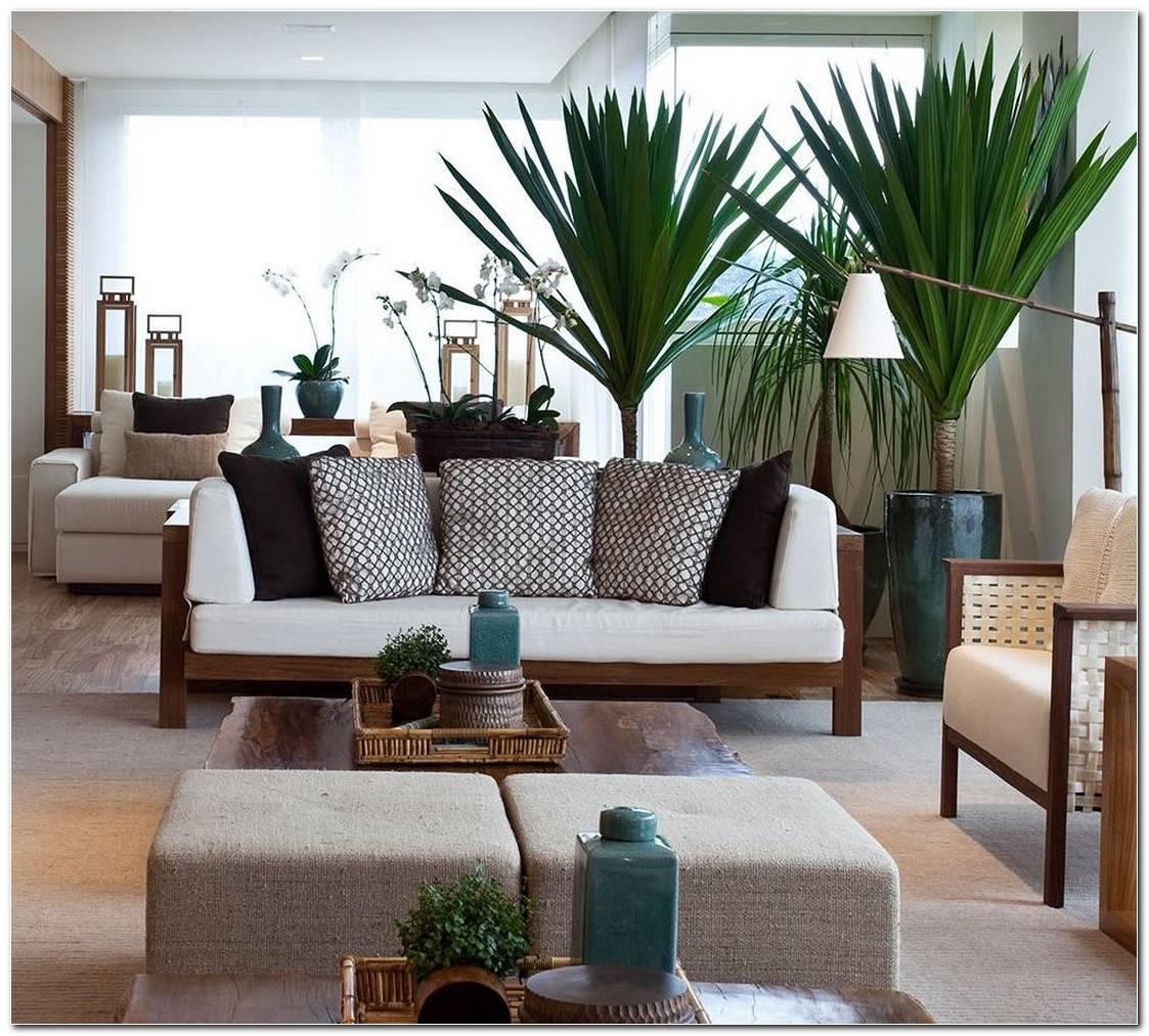 Plantas Para Sala 16 Melhores Espécies Para Decorar O Ambiente