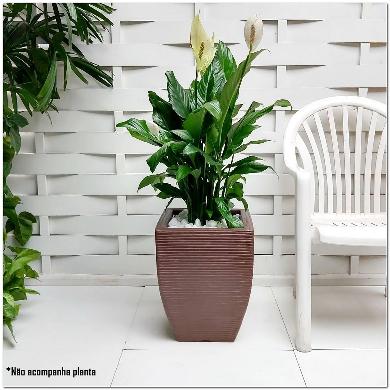 Plantas Plastico Para Decoração
