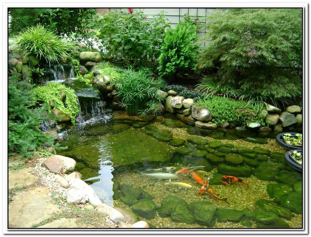 Relaxing Casa Do Lago With A Large Koi Fish Pond