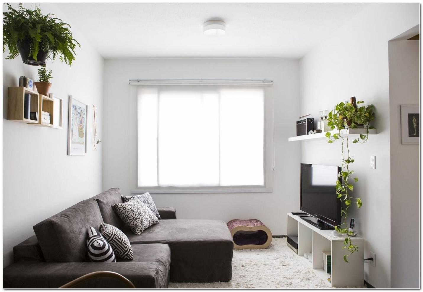 Sala De Estar Pequena Com Um Sofa