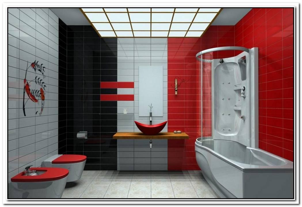 Silver Red Minimalist Bathroom