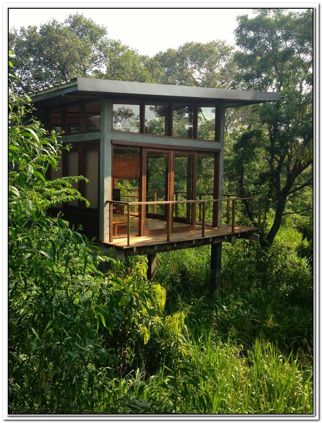 Small Guest Residence In The Trees