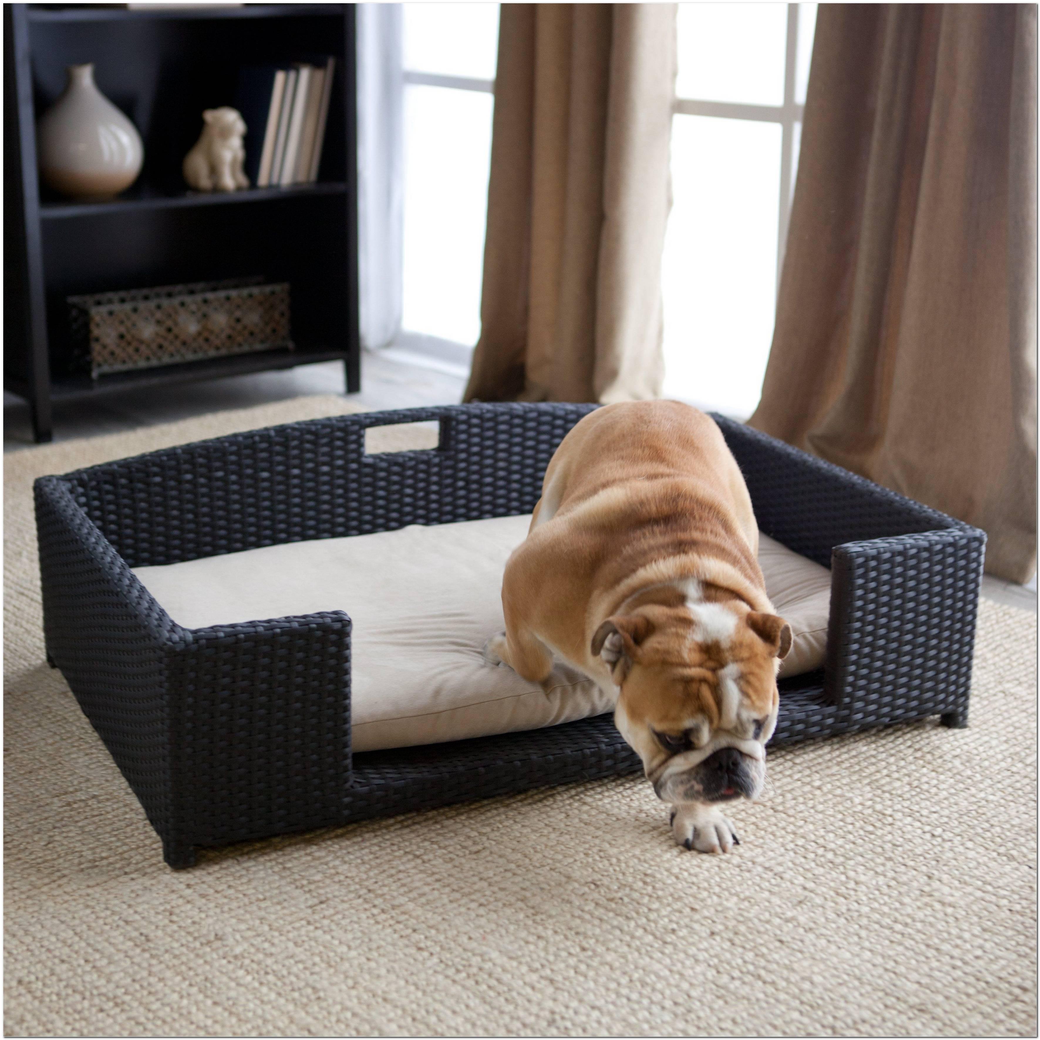 Sofá Para Cachorro 25 Modelos Perfeitinhos Para Seu Melhor Amigo