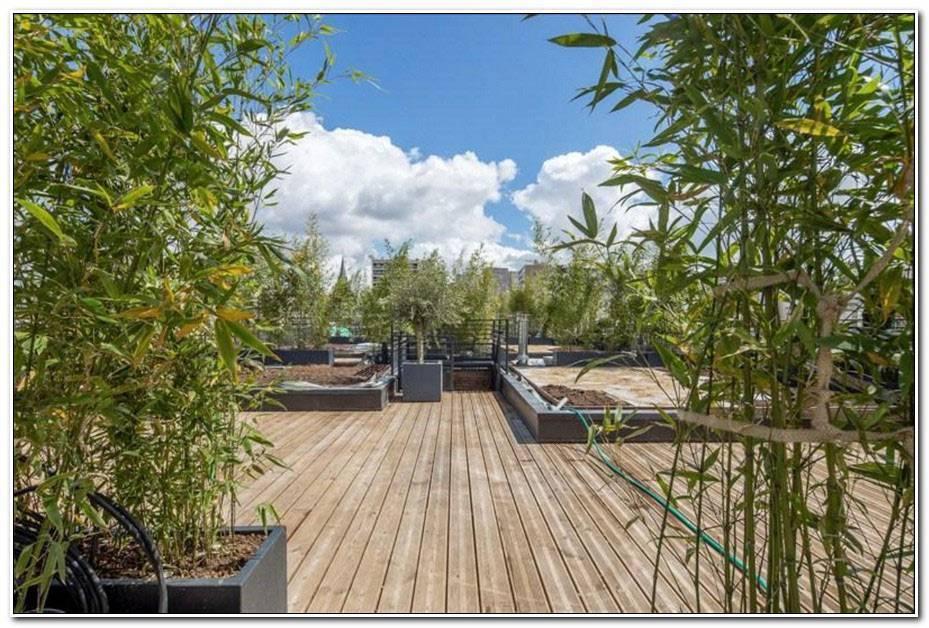 Terrasses Et Jardins Lyon (Adresse