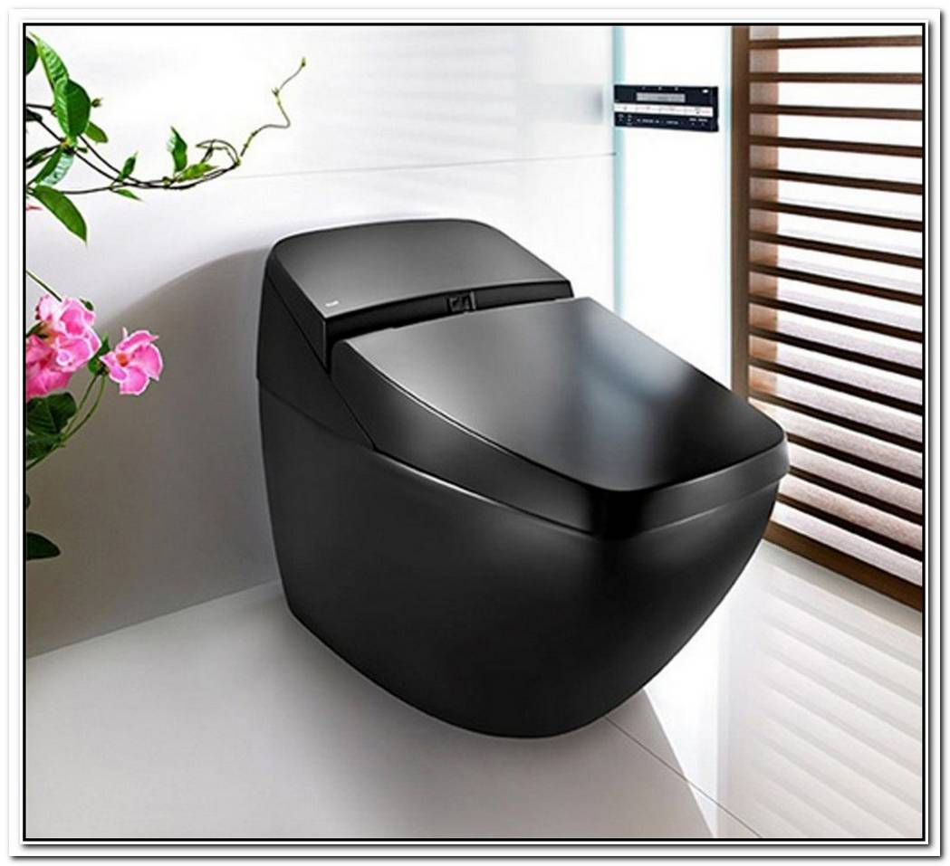 The Singing Toilet From Inax