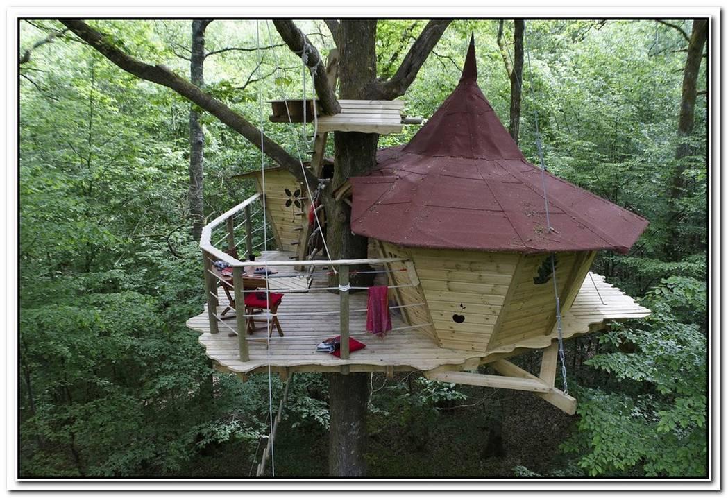 Top 10 Tree Houses Design Ideas We Love
