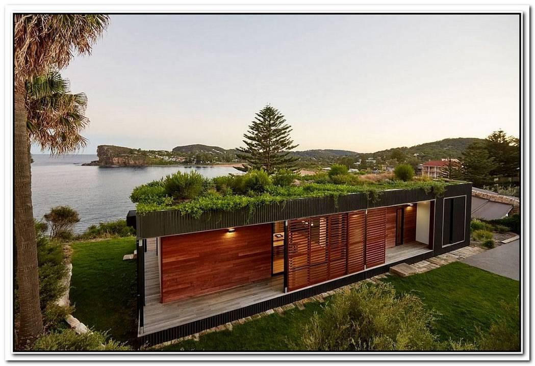 Tree Eco Aesthetic Style Home
