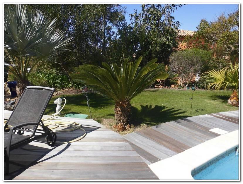 Unique Jardin MéDiterranéEn Piscine