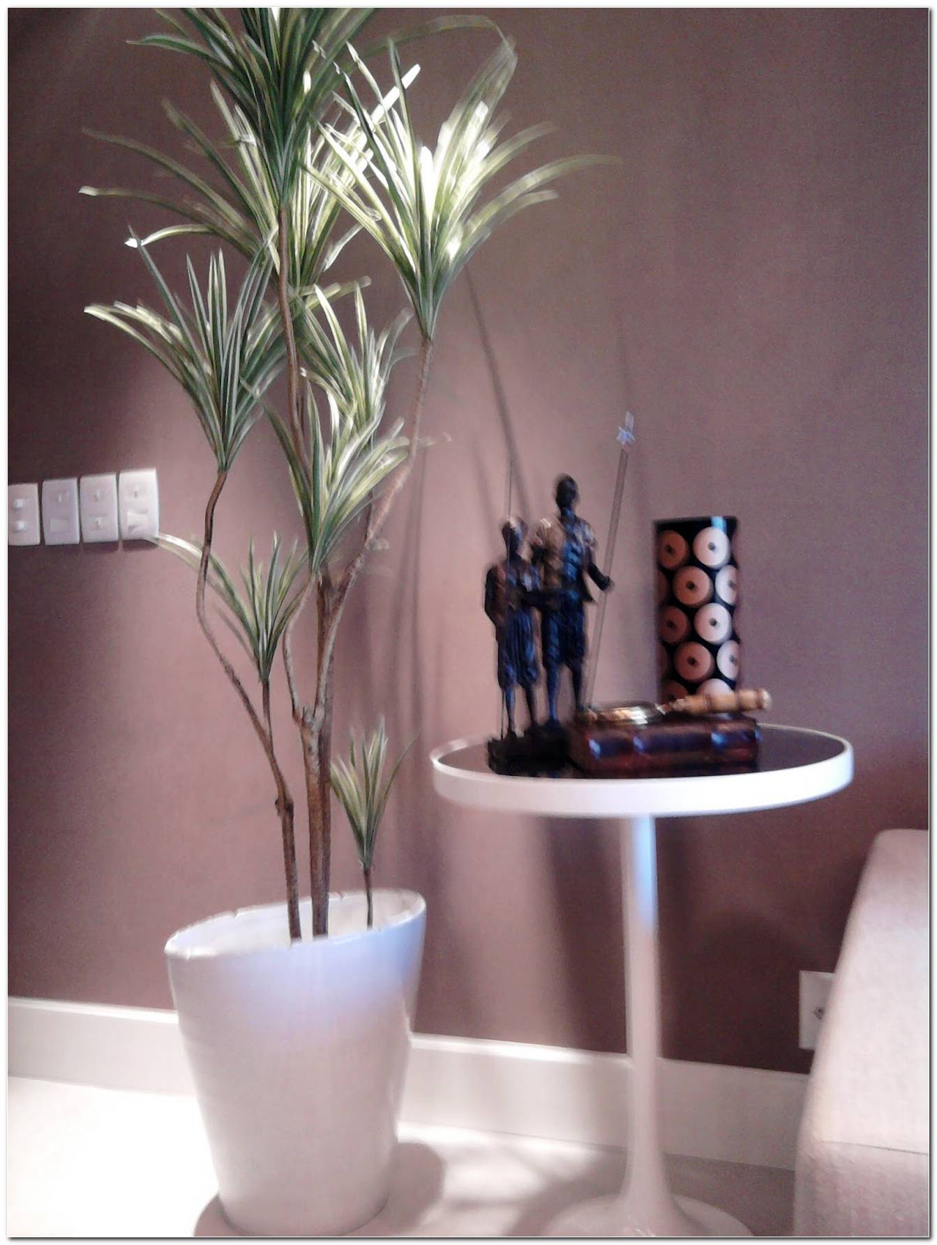 Vasos De Plantas Para Sala De Tv