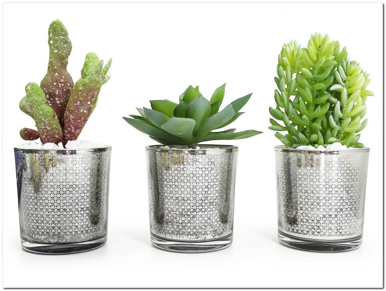 Vasos De Vidro Decorativos