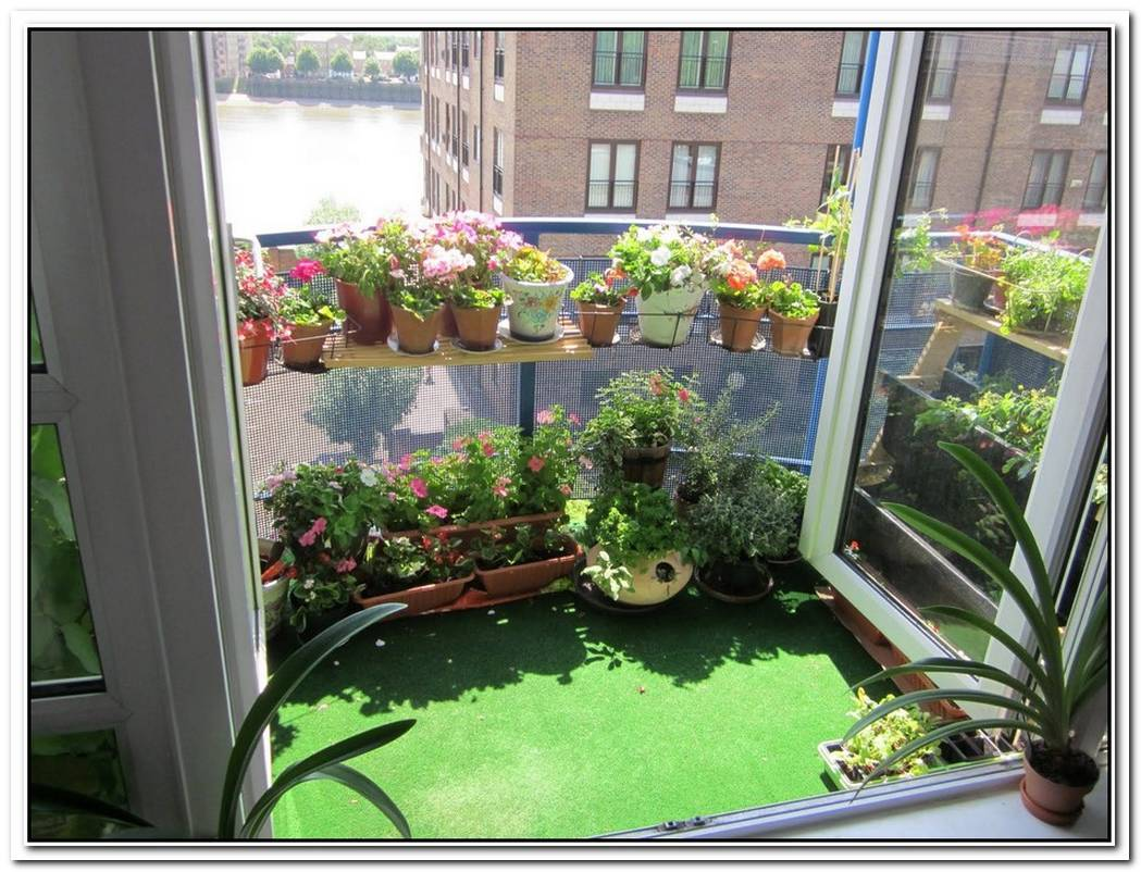 Volet Vegetal Window Garden For Apartments