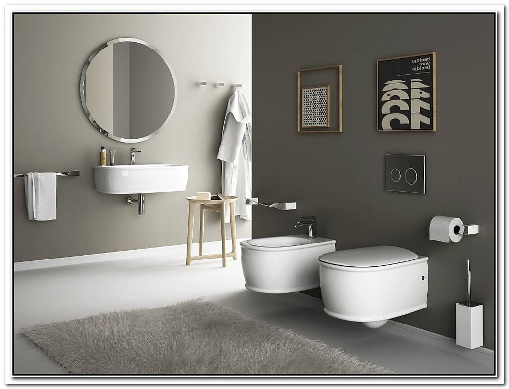 WallHung Sanitary Solutions For The SmallSpaceConscious Bathroom