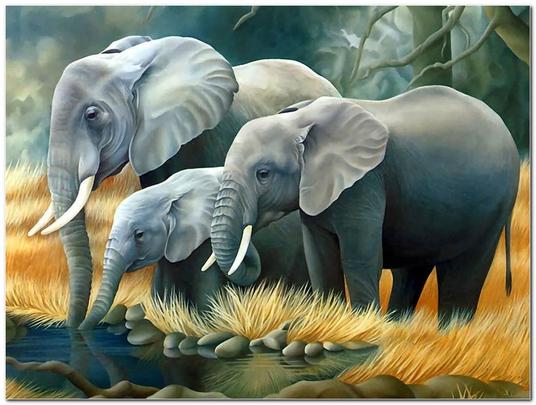 3D Animal Background