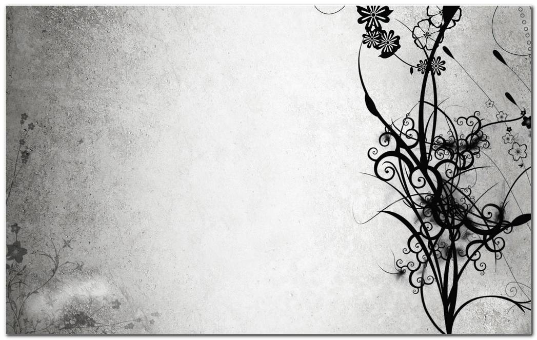 Abstract Black And White Flowers Wallpapers 162 1680x1050