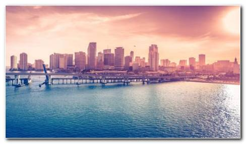 Afternoon Miami HD Wallpaper
