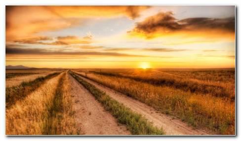 Alluring fields HD wallpaper