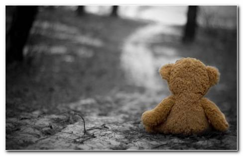 Alone Teddy HD Wallpaper