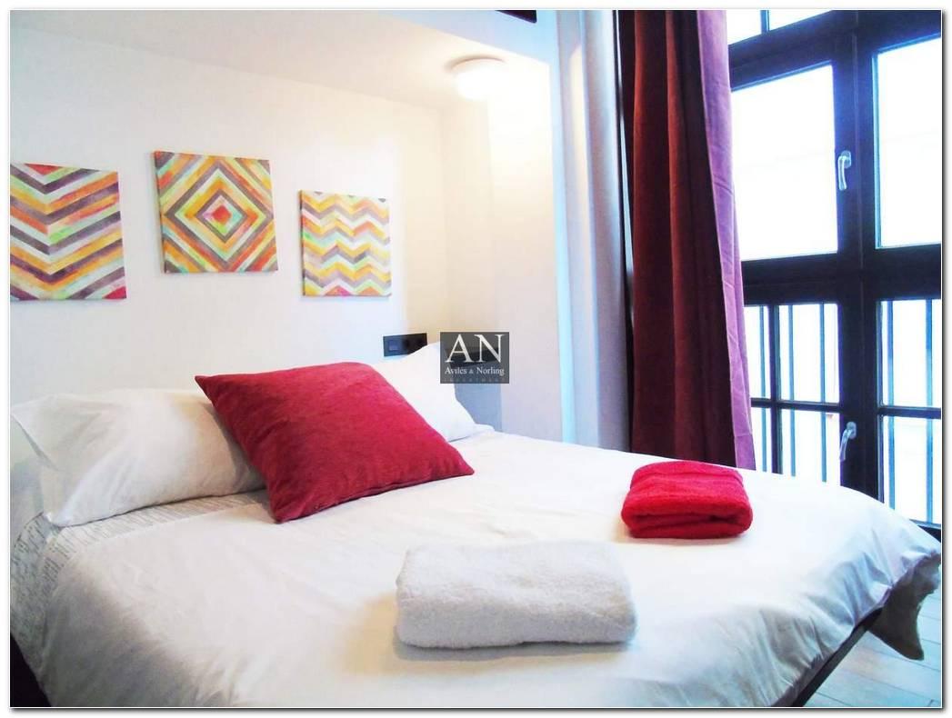 Alquiler Apartamentos 1 Dormitorio Malaga