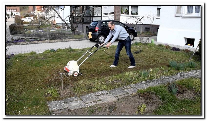 Alten Rasen Neu Anlegen Garten