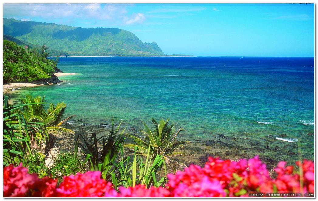 Amazing Desktop Image Hawaii Wallpapers Background