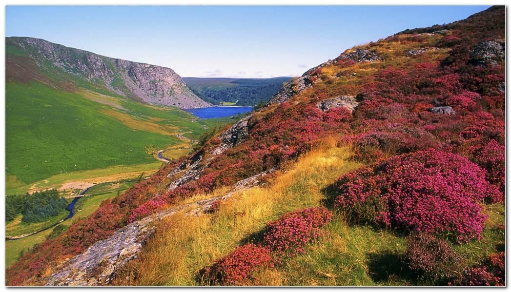 Amazing Ireland Nature Wallpaper Background Desktop