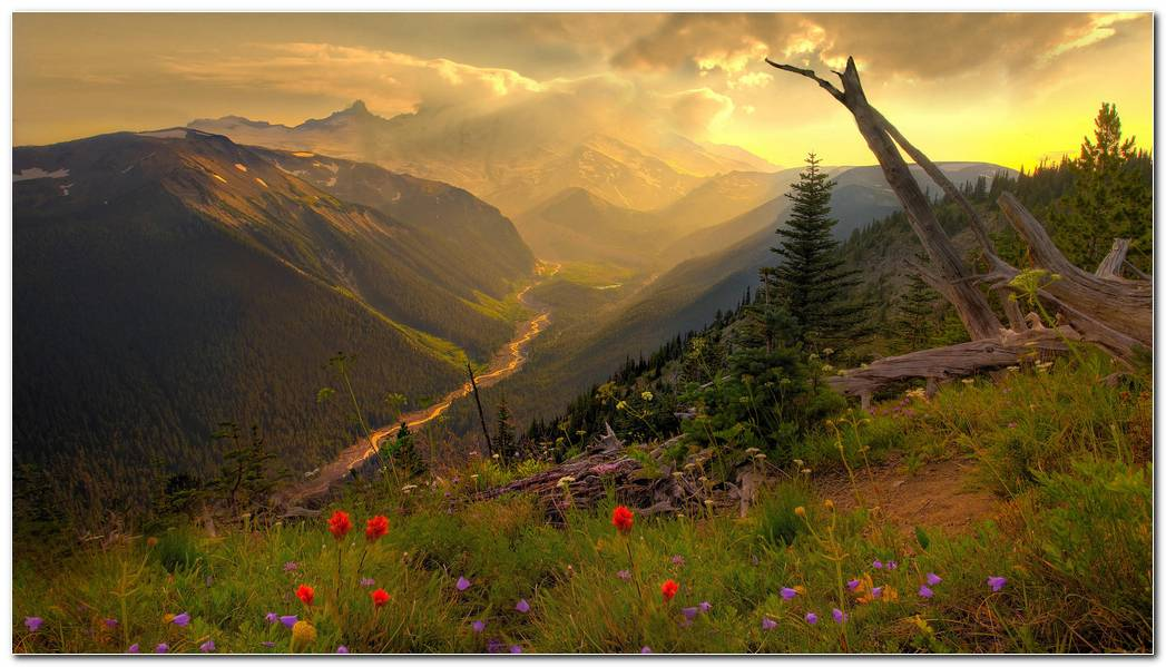 Amazing Landscape Nature Wallpaper Background