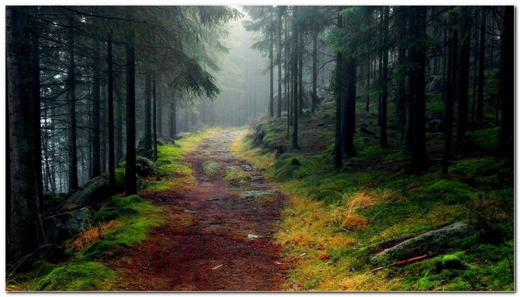 Amazing Norwegian Nature Wallpapers Background
