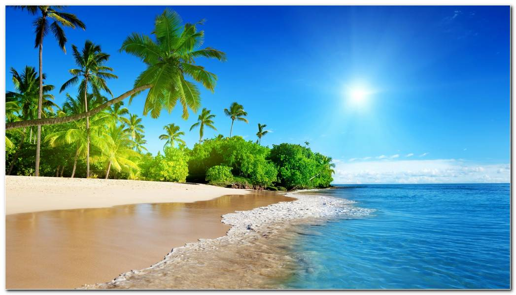 Amazing Tropical Nature Wallpaper Background Image