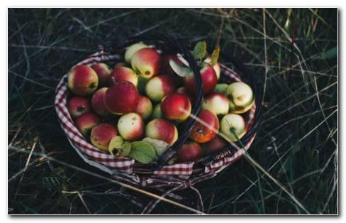 Apples Basket HD Wallpaper