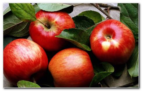 Apples Nutrition HD Wallpaper