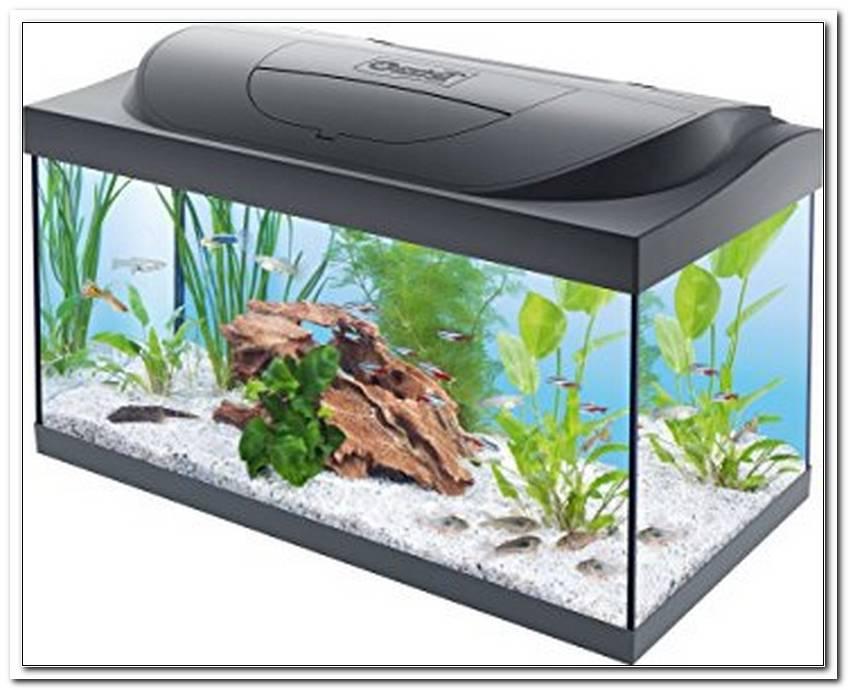 Aquarium Komplettset Mit Led Beleuchtung