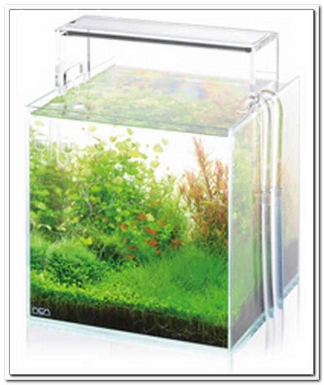 Aquarium Led Beleuchtung Berechnen