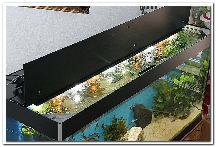 Aquarium Led Beleuchtung Selber Bauen 2011