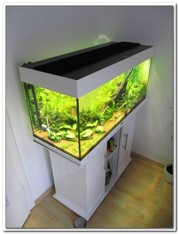 Aquarium Led Beleuchtung Selber Bauen Anleitung 2015