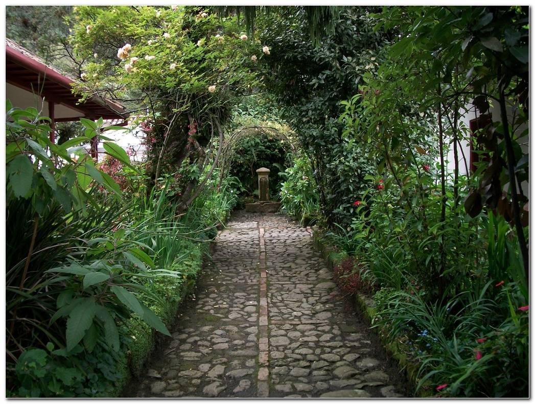 Arcos Vegetales En El Jard?n De La Quinta De Bol?var